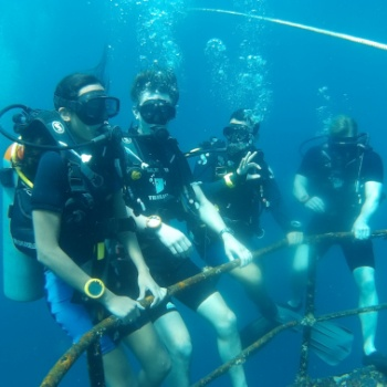 padi-introductions