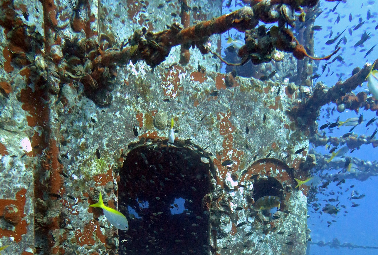 HTMS-Chang-wreck-diving