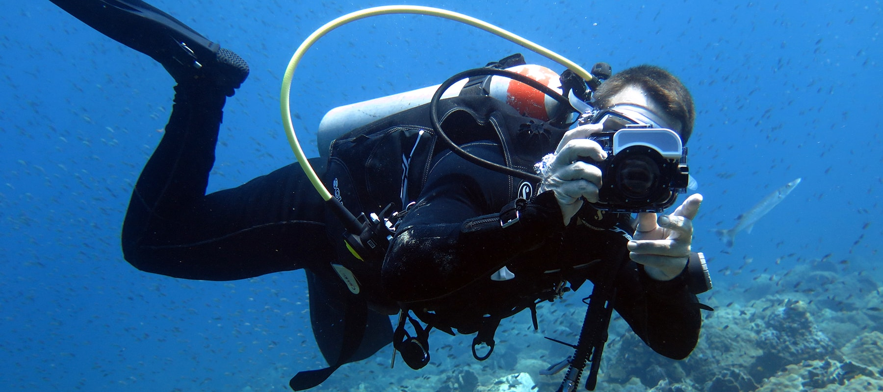 diving-04