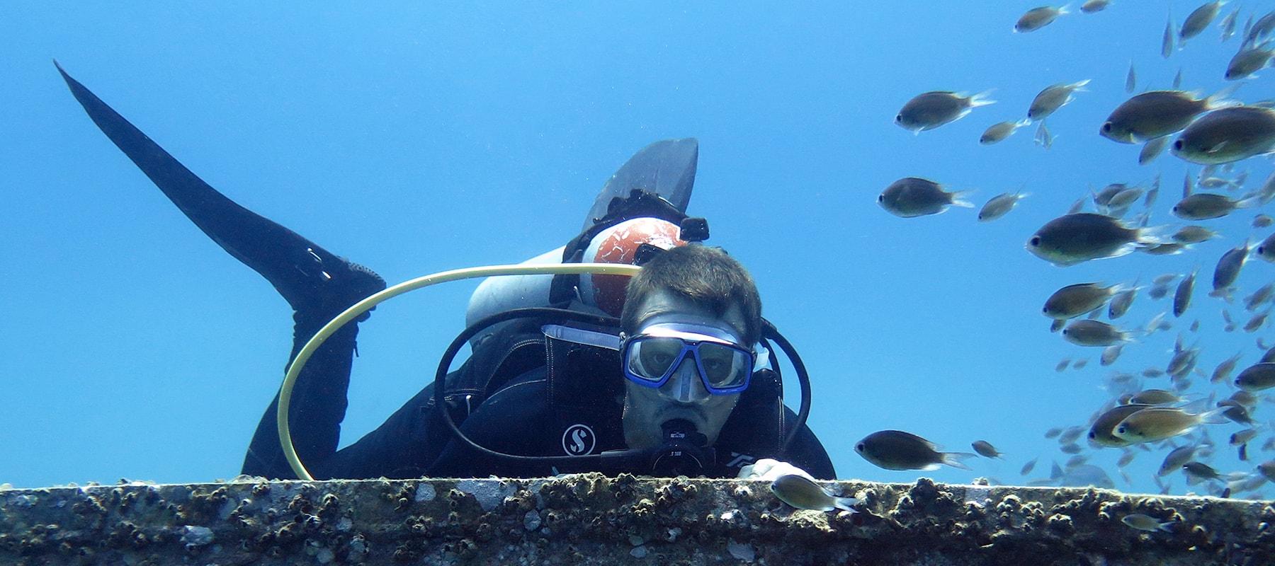 diving-12