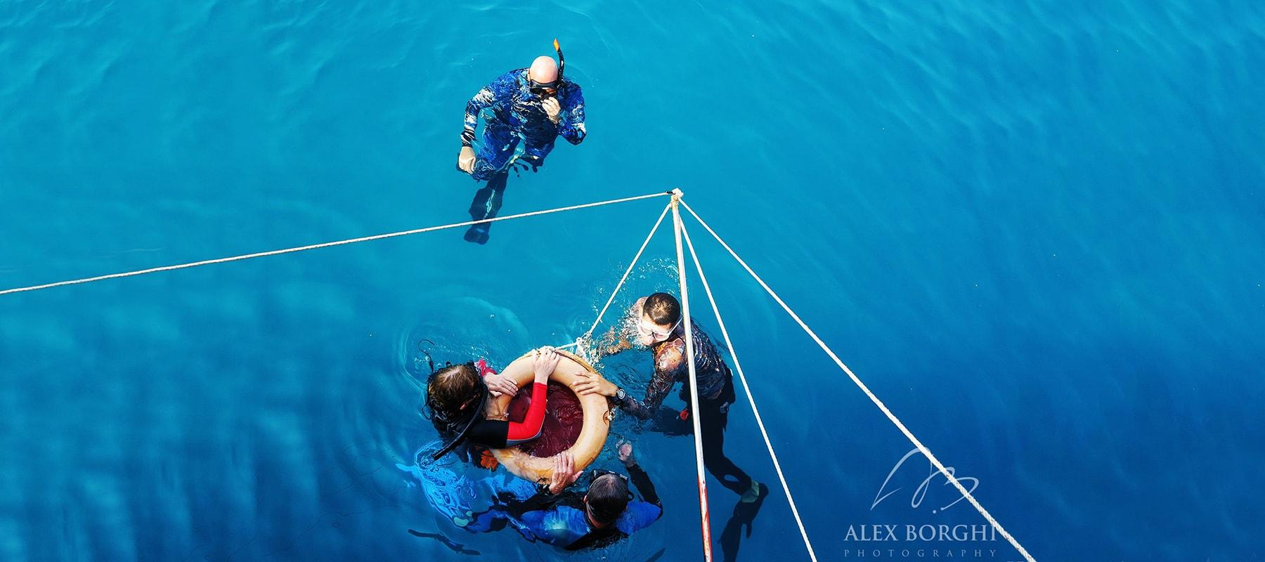 freediver-04